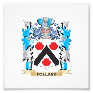 Pollard Coat of Arms - Family Crest Art Photo