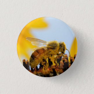 Pollen-Coated Honey Bee on a Sunflower Button