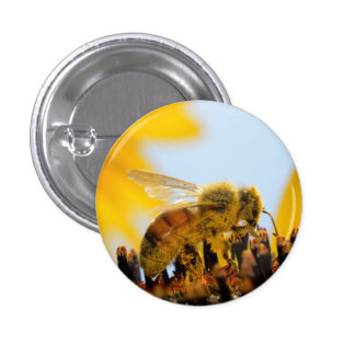 Pollen-Coated Honey Bee on a Sunflower Button
