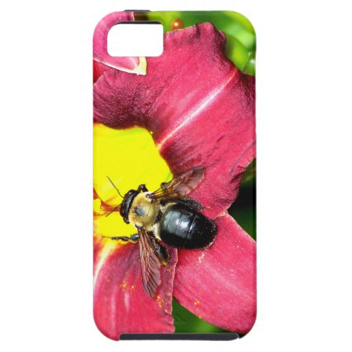Pollinating Bee iPhone 5 Case