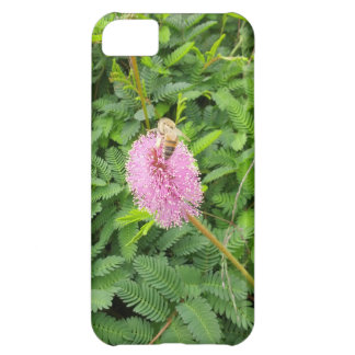 Pollinating Bee Case For iPhone 5C
