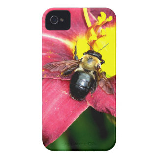 Pollinating Bee iPhone 4 Case-Mate Cases