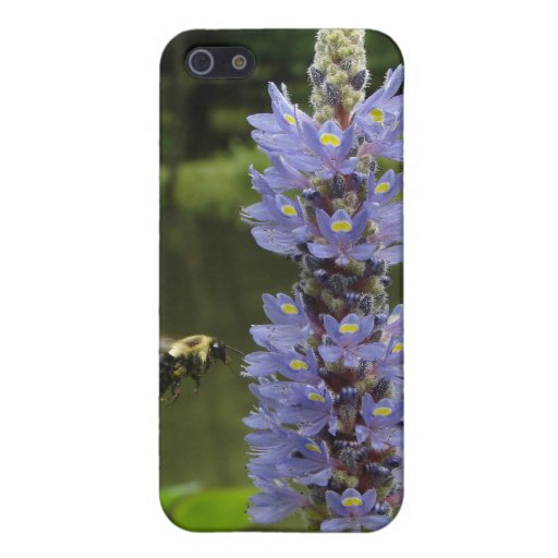 Pollinating bee cover for iPhone 5