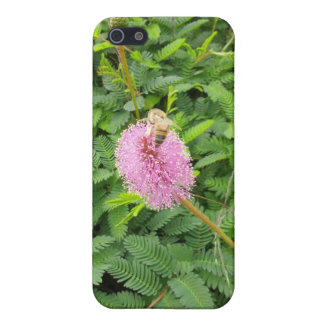 Pollinating Bee iPhone 5/5S Covers