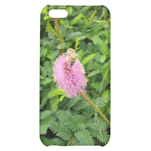 Pollinating Bee iPhone 5C Cases