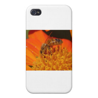 pollination iPhone 4 cases