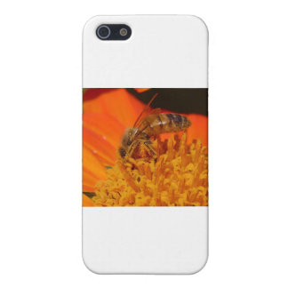 pollination iPhone 5 covers