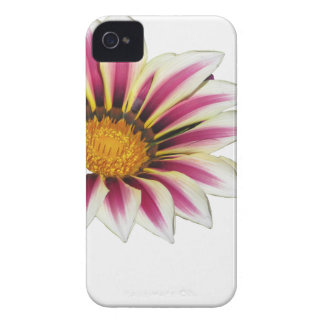 Pollination of Gazania flowerhead on white Case-Mate iPhone 4 Case