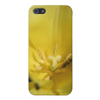 Pollinator iPhone 5 Cover