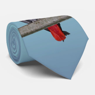 Polly Tie Double Sided Colour (Sky Blue Mix)