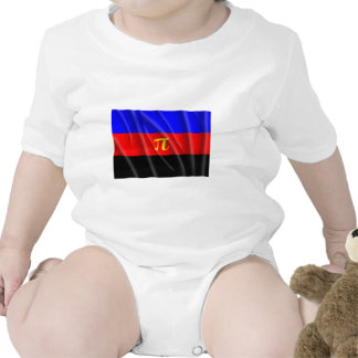 POLYAMORY FLAG FLYING BABY BODYSUITS