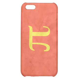 POLYAMORY PRIDE VINTAGE DESIGN CASE FOR iPhone 5C