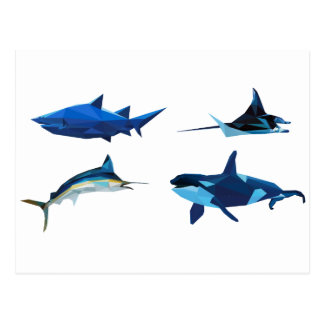 polygon trifishes graphic kind animals OF the sea Post Card