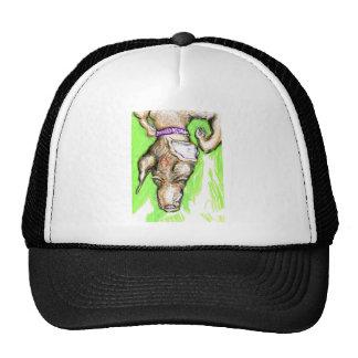 Polymorphic Canidae Nomine Sunday-Sundae Hats