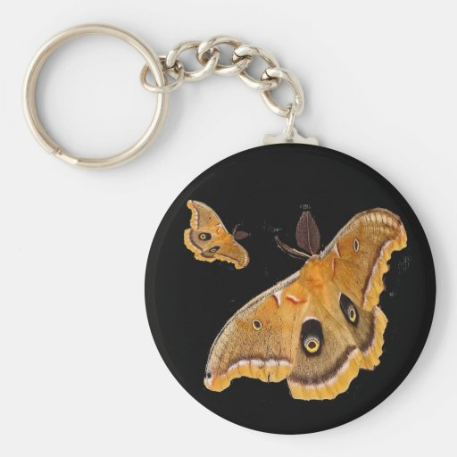 Polyphemus Moth Keychain
