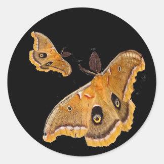 Polyphemus Moth Round Sticker
