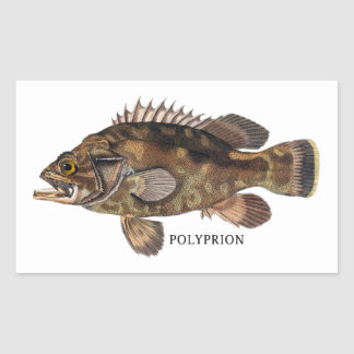 POLYPRION RECTANGULAR STICKER