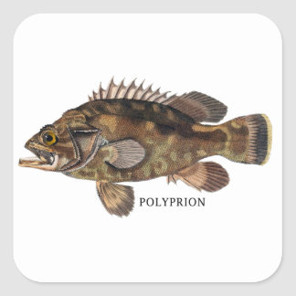 POLYPRION SQUARE STICKER