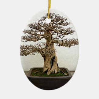 Pomegranate Bonsai Tree Ceramic Oval Decoration