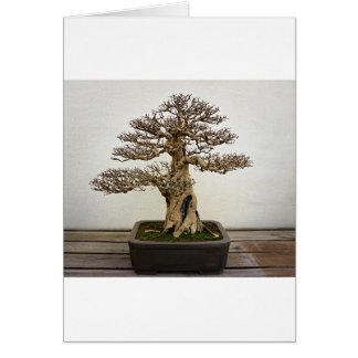 Pomegranate Bonsai Tree Greeting Card
