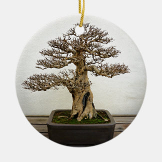 Pomegranate Bonsai Tree Round Ceramic Decoration