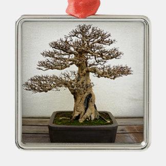 Pomegranate Bonsai Tree Silver-Colored Square Decoration