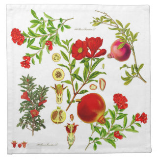 Pomegranate Cloth  Napkins (Set of 4)
