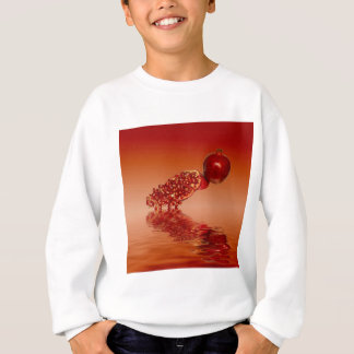 Pomegranate superfood fruit sweatshirt