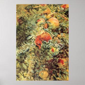 Pomegranates II by Sargent, Vintage Garden Art Poster