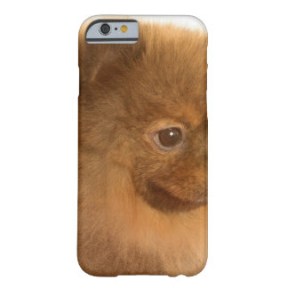Pomeranian Barely There iPhone 6 Case