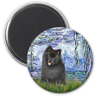 Pomeranian (black) - Lilies 6 Magnet