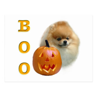 Pomeranian Boo Postcard