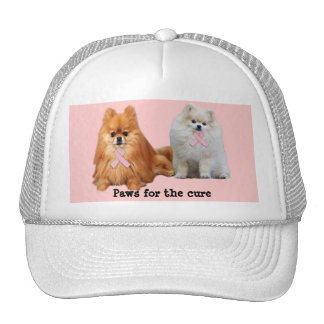 Pomeranian Breast Cancer Hat