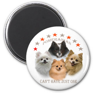 Pomeranian Can't Have Just One 6 Cm Round Magnet