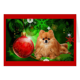 Pomeranian  Christmas Card Red Ball Green
