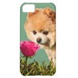 Pomeranian Dog and Rose Customisable