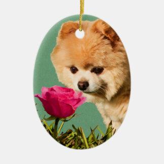Pomeranian Dog and Rose Ornament