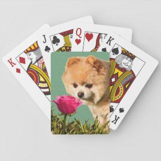 Pomeranian Dog and Rose Poker Cards