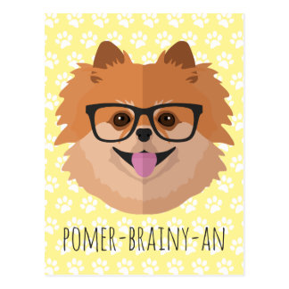 Pomeranian Dog In Nerd Glasses | POMER-BRAINY-AN Postcard