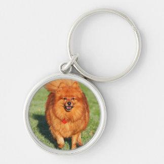 Pomeranian dog keychain, gift idea Silver-Colored round key ring