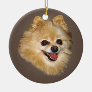 Pomeranian Dog on Brown Ornament