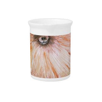 pomeranian dog, tony fernandes pitcher