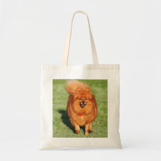 Pomeranian dog tote bag, gift idea