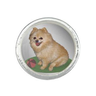 Pomeranian Dog with Ball Customizable