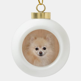 Pomeranian face ceramic ball christmas ornament