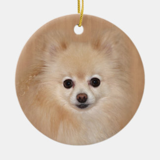Pomeranian face round ceramic decoration