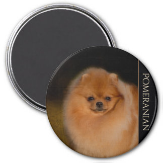 Pomeranian Fridge Magnet