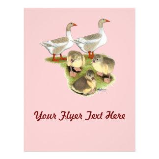 Pomeranian Goose Family 21.5 Cm X 28 Cm Flyer