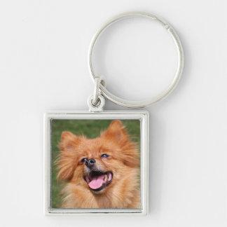Pomeranian happy dog keychain, gift idea Silver-Colored square key ring