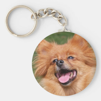 Pomeranian happy dog keychain, gift idea